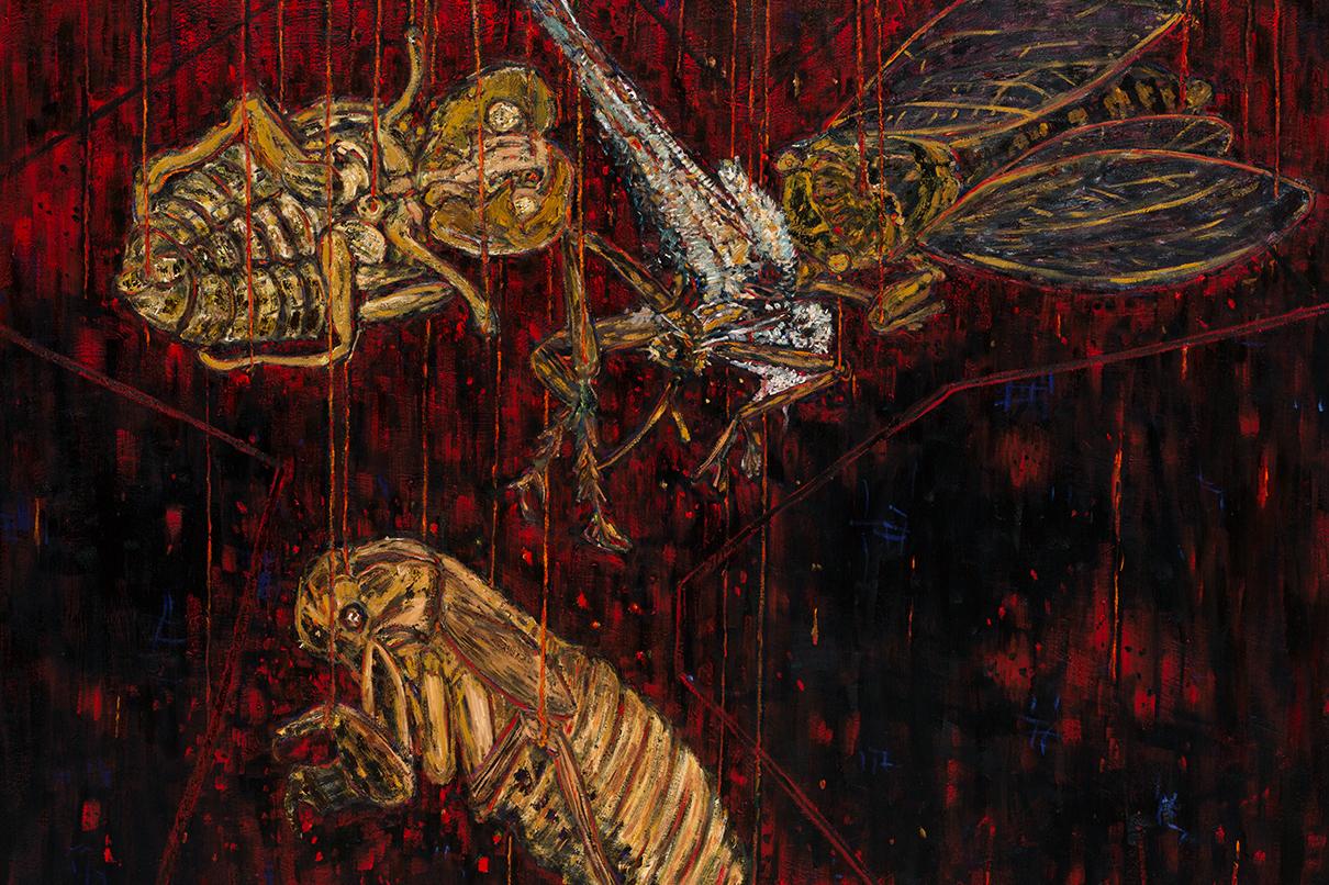 cac-cicada